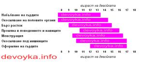 fazi_na_puberteta_pri_momichetata